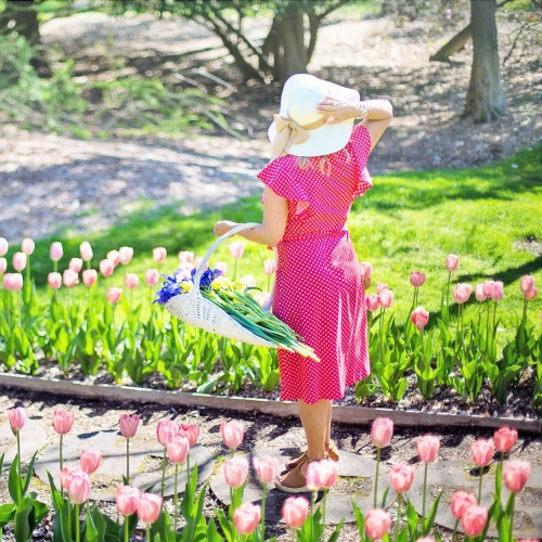 garden-4206274_1920ÚJ.jpg