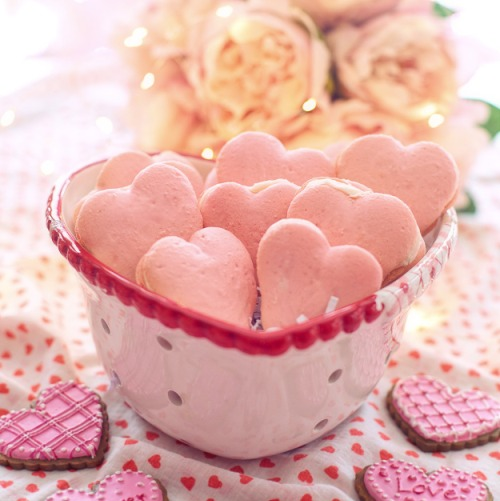 valentines-day-4754007_1920új.jpg