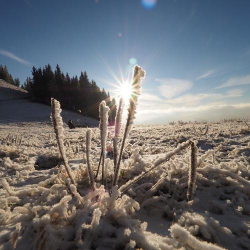 winter-1138911_1280ÚJ.jpg